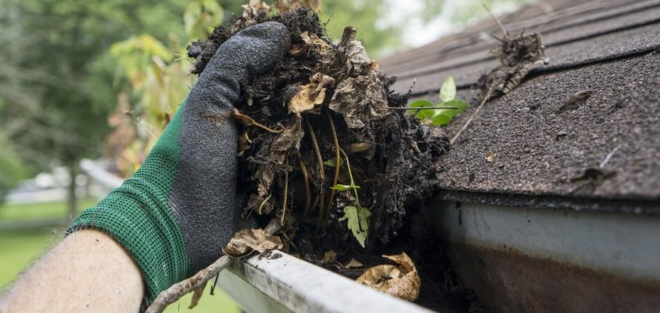 A hand cleaning leaves out of a gutter, a very important part of roof maintenance.
