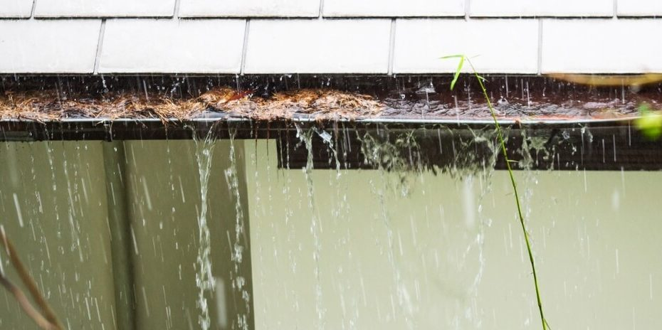 A roof with clogged gutters that needs some roof maintenance